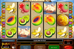 age of discovery microgaming slot machine