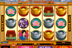 asian beauty microgaming slot machine