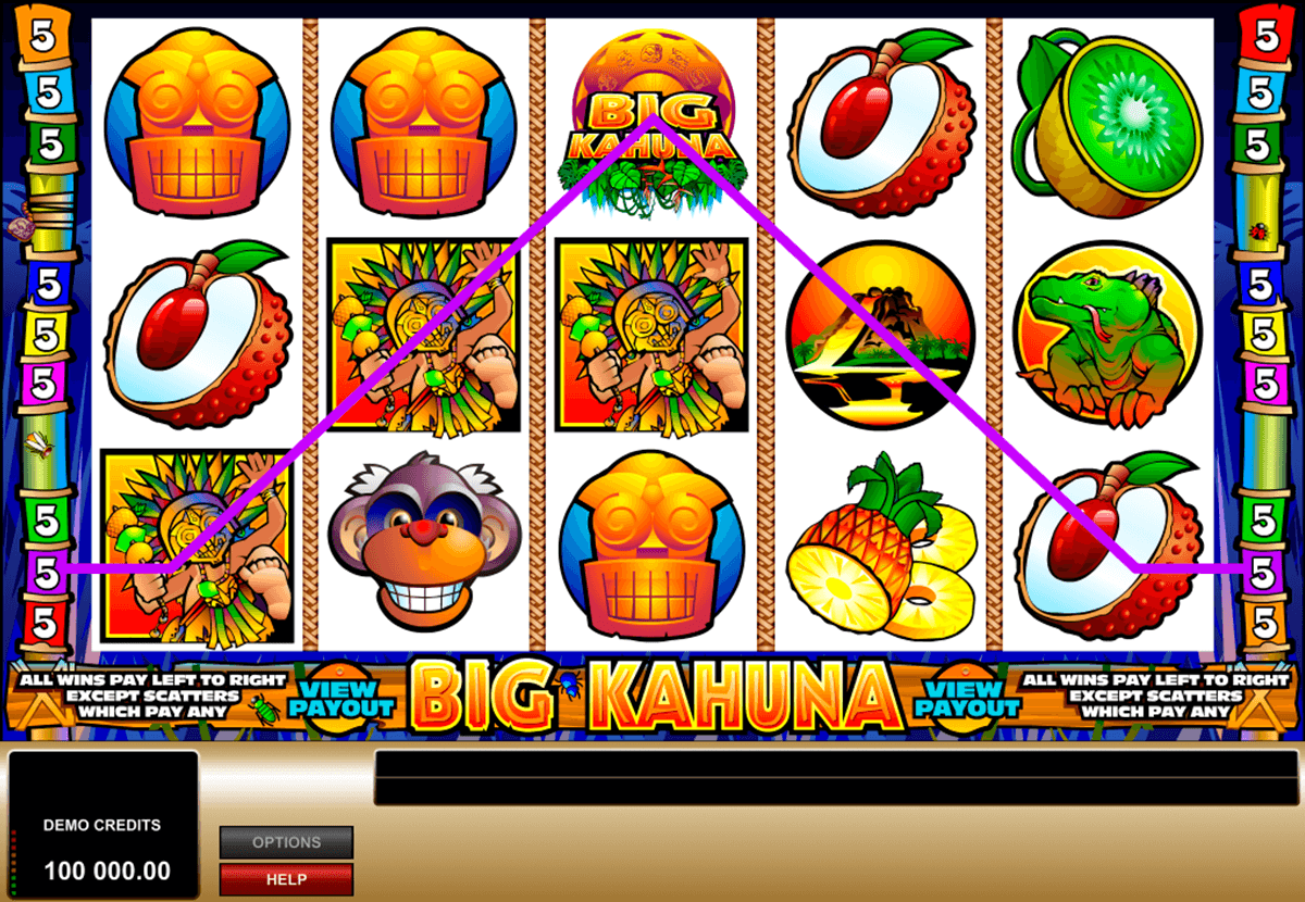 big kahuna microgaming slot machine