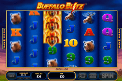buffalo blitz playtech slot machine