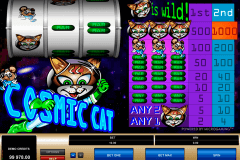 cosmic cat microgaming slot machine