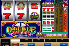 double wammy microgaming slot machine