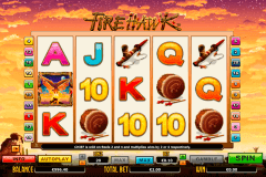 fire hawk netgen gaming slot machine