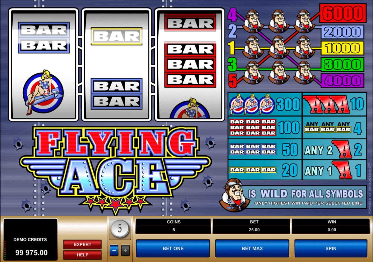 flying ace microgaming slot machine