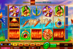 fortunes of the amazons netgen gaming slot machine