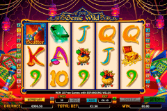 genie wild netgen gaming slot machine