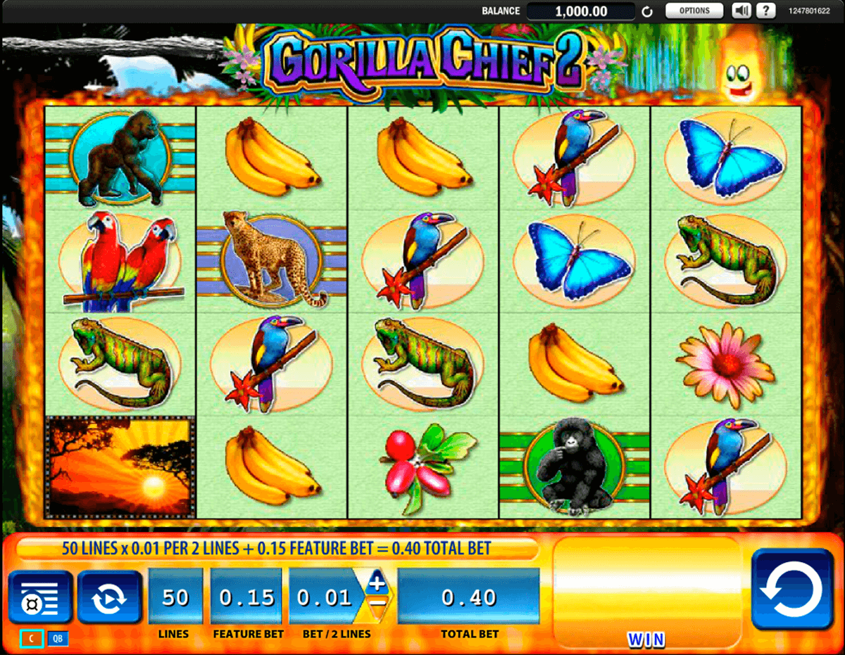 gorilla chief 2 wms slot machine