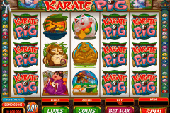 karate pig microgaming slot machine