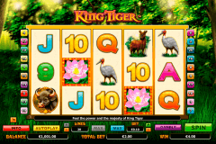 king tiger netgen gaming slot machine