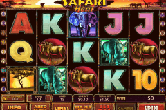 safari heat playtech slot machine