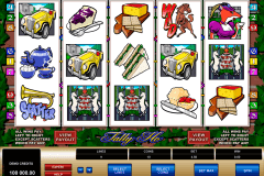 tally ho microgaming slot machine