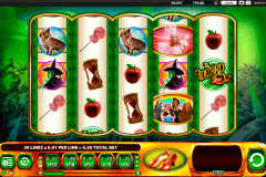 the wizard of oz ruby slippers wms slot machine