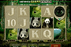 untamed giant panda microgaming slot machine