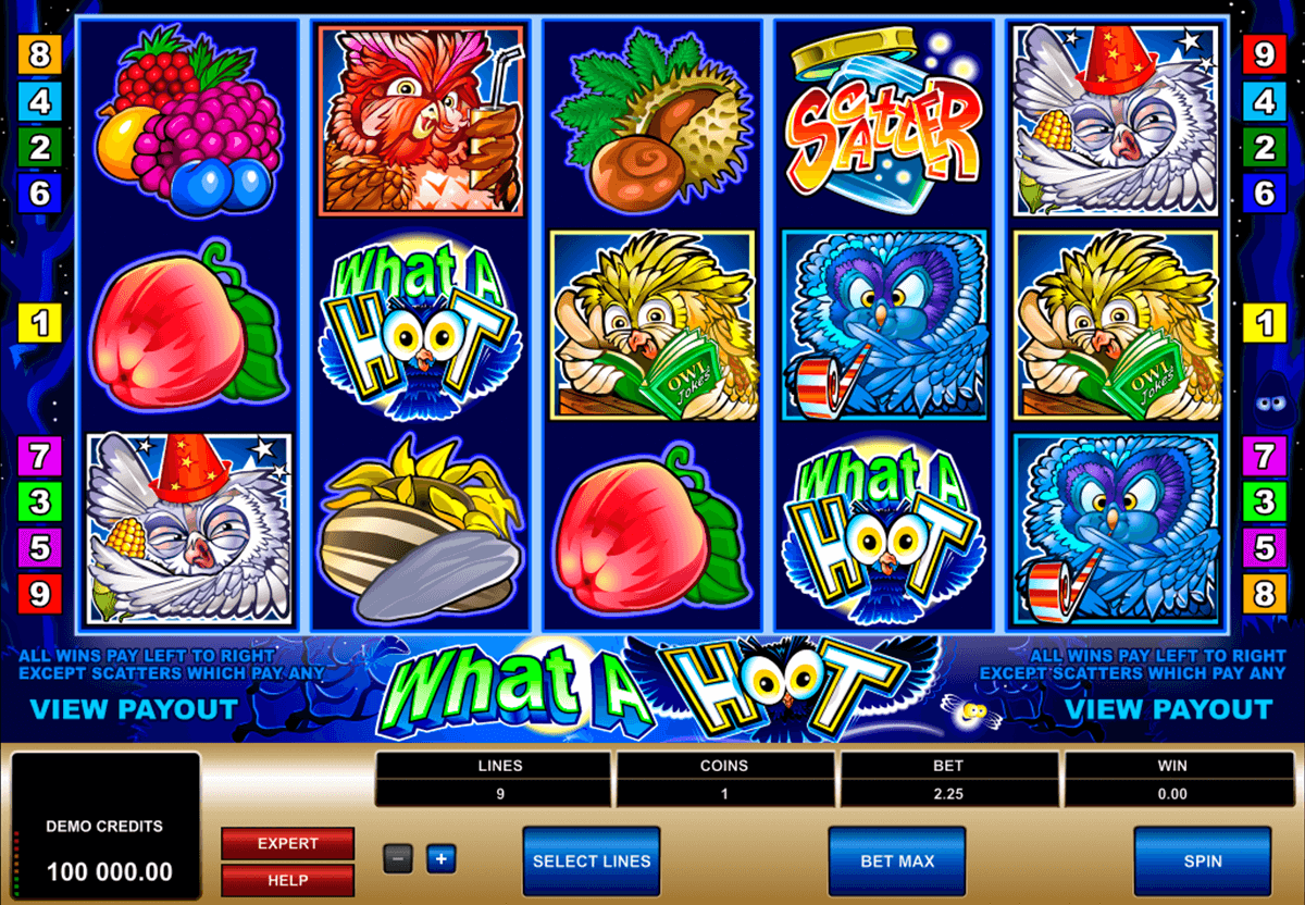 what a hoot microgaming slot machine