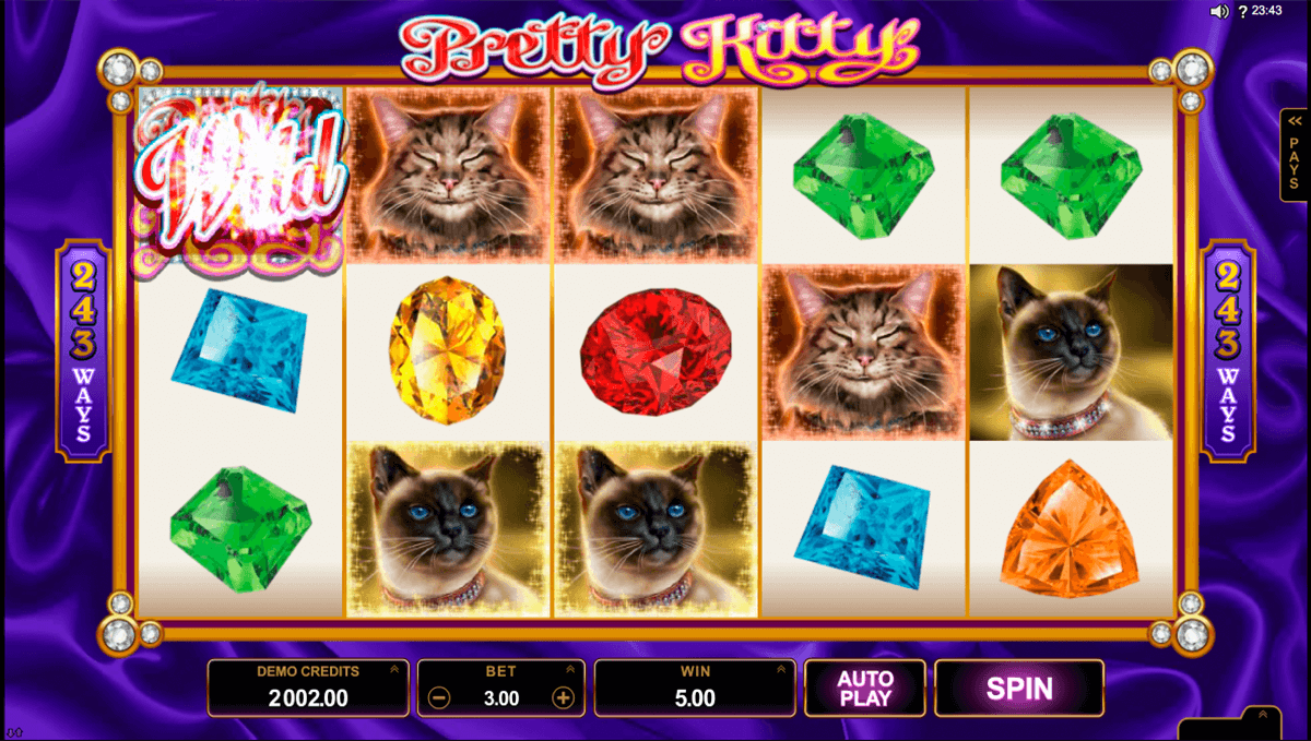 win sum dim sum microgaming slot machine