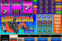 zany zebra microgaming slot machine